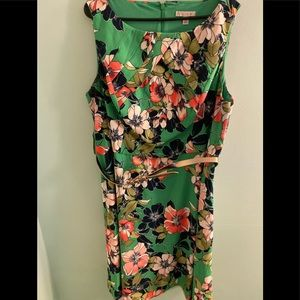 Dress Barn belted dress